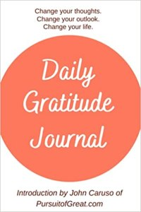 Daily Gratitdude Journal Cover