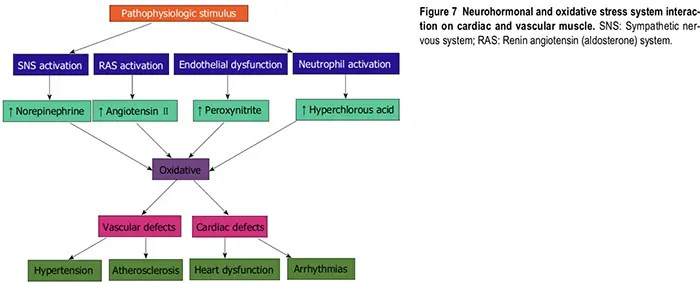 nutraceutical