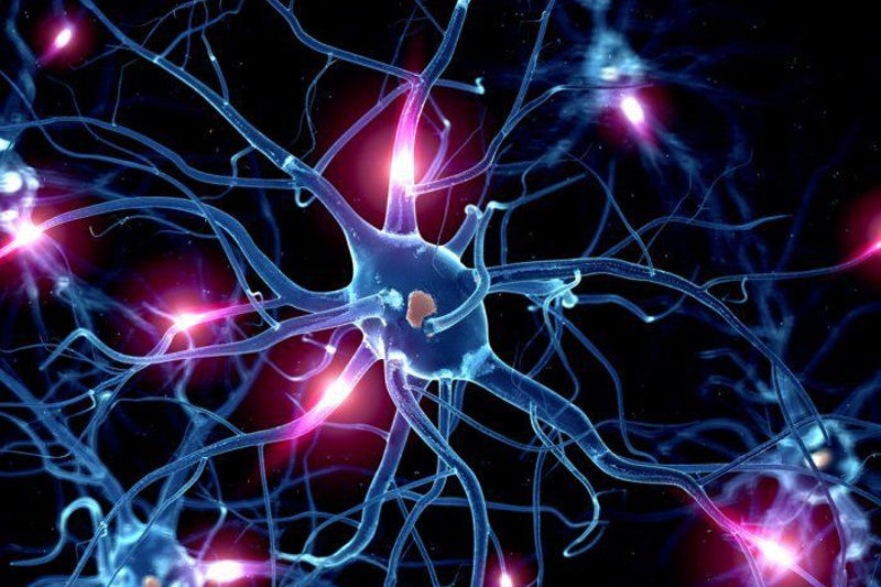 Functional Neurology: Serotonin and Brain Health | El Paso, TX Chiropractor