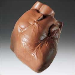 anatomia cuore di cioccolato