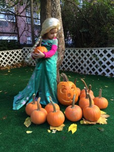 Our Halloween and Pumpkin Patch