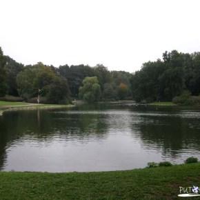 Kungsparken park