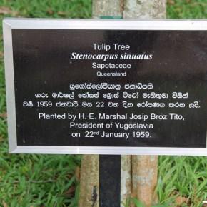 Royal Botanical Gardens - Peradeniya - Josip Broz Tito