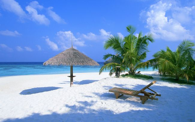 Rezultat iskanja slik za maldivi
