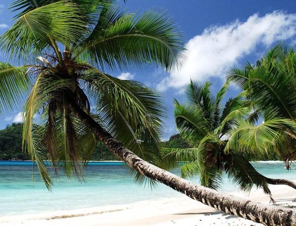 Sejšeli ili Mauricijus? Aviokarte već od 457€