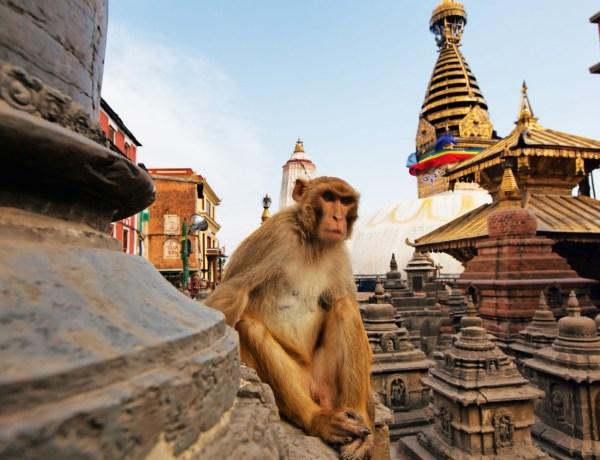 Nepal – Povratne aviokarte za 421€