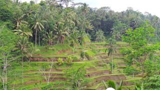 Mija Prlenda - Indonezija