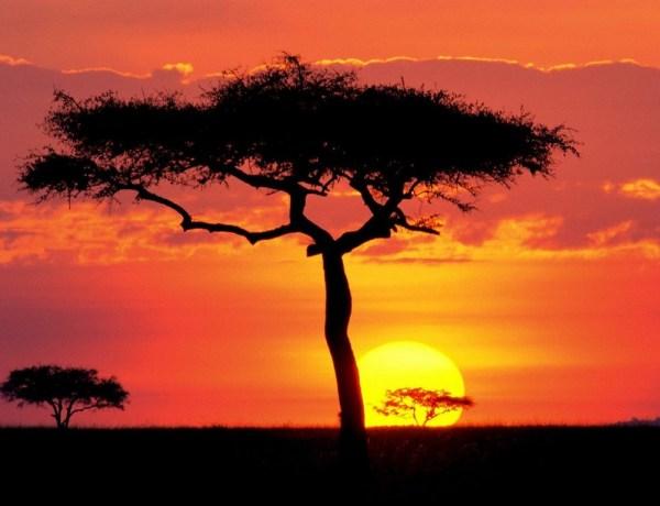 Ivo Hrvatić: Božanstvo prirode Masai Mare (Kenija)