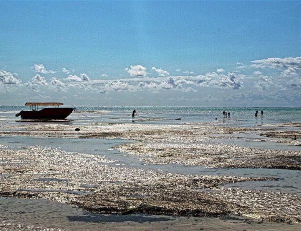 Tanzanija i Zanzibar by Jurica Bukulin