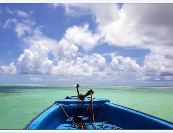 Zanzibar Experience  by Ivica Jureša