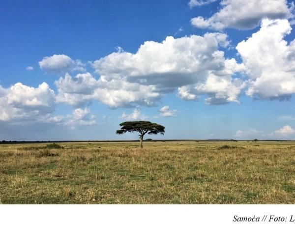 KENIJA I TANZANIJA – Sedmi dio: Bijela Masajka