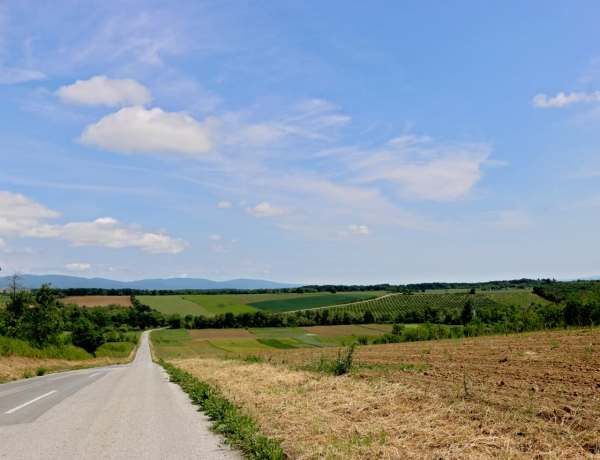 Kako nas je Slavonija naučila zašto treba putovati po Hrvatskoj