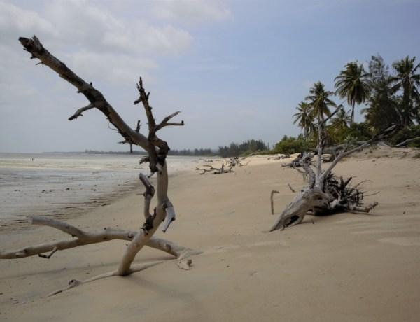 Mozambik – tamo gdje bush dodiruje more