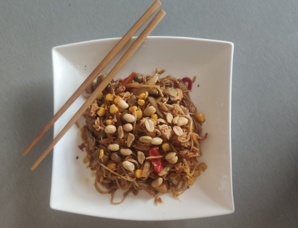 Fried noodles – wok na sto načina (Azija)