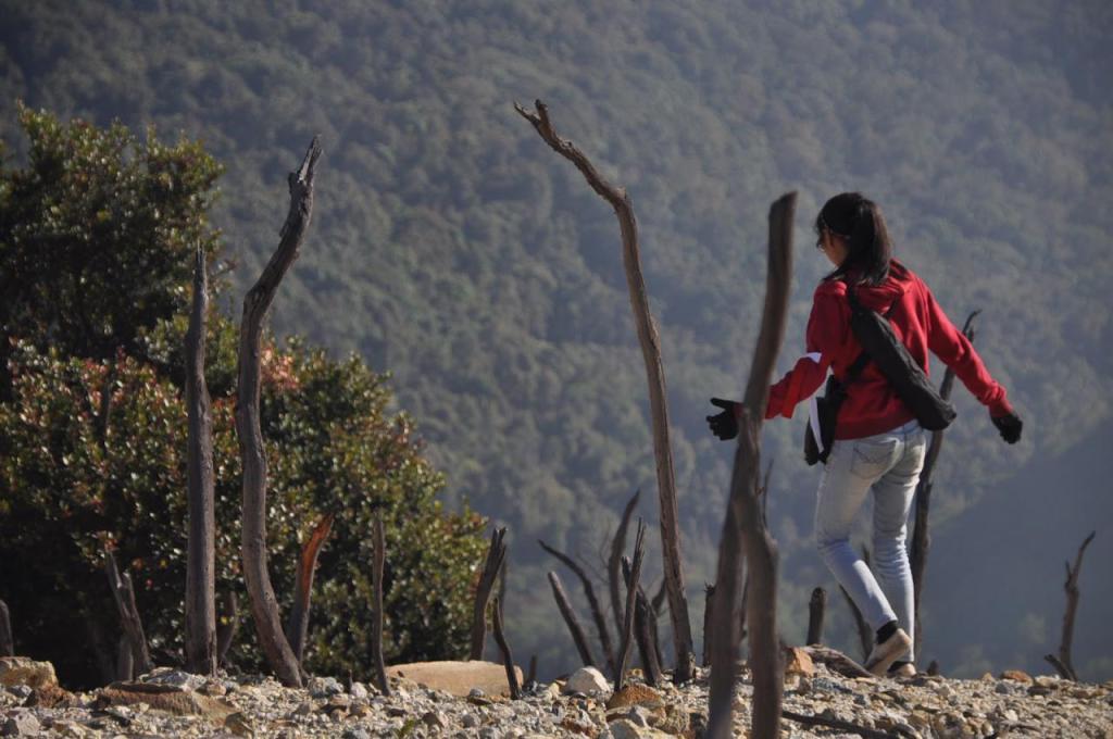 Papandayan, Gunung Ramah Daki Bagi Pemula