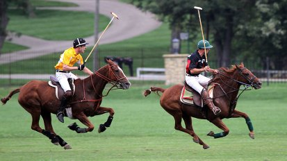 Putsch Racing vs Studio 47 Polo Match