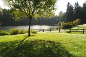 bradley-lake