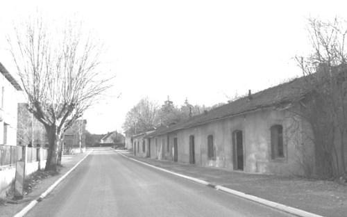 carrefour PB