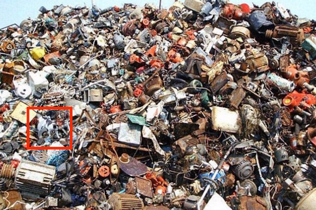 find-the-cat-in-trash-puzzle-picture-Answer