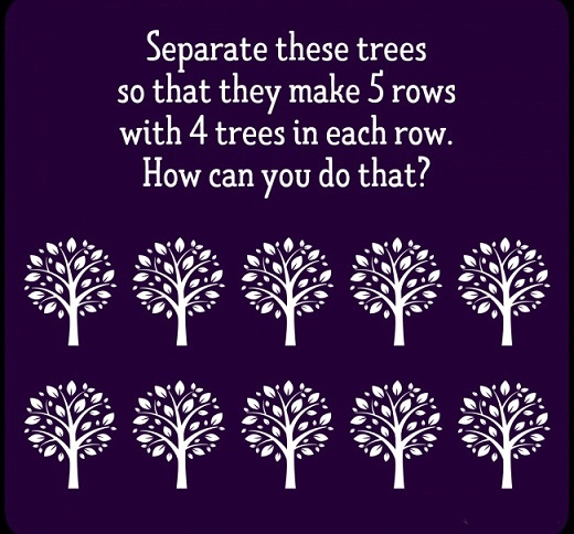 5 rows 4 trees in a row riddle
