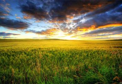 Why prairie Canada is primed for solar growth