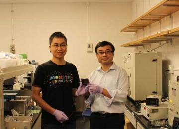Scientists have developed a new method to fabricate low-cost high-efficiency solar cells