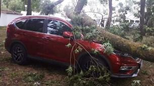 Preko 50 automobila uništeno za 15 minuta nevremena