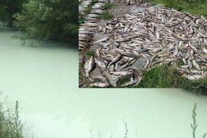 Uskoro će saopštiti koliku je štetu izazvalo ispuštanje opasnog otpada u Ćehotinu