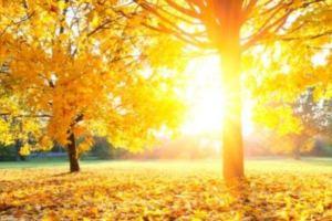 Miholjsko ljeto do kraja nedjelje, nove padavine krajem mjeseca