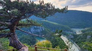 Kad rijeka zakrivuda: Neponovljivi meandri Ćehotine