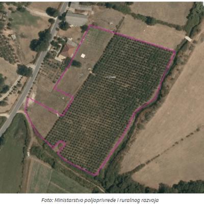 ZA SUBVENCIJE – Isplaćeno 575 hiljada eura za 1.862 poljoprivrednika