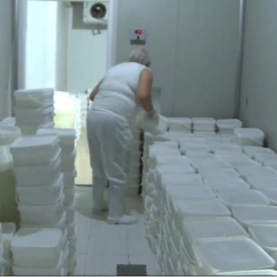 MINISTARSTVO POLJOPRIVREDE – Proizvođačima će biti isplaćeno još najmanje 300.000 eura