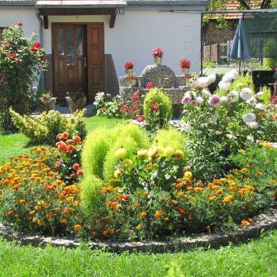 Izabrana najljepša dvorišta i terase, nagrade za vrijedne vlasnike