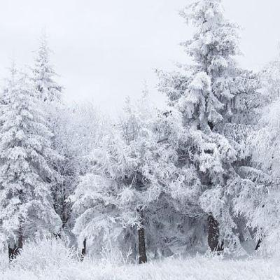 Micev: Najhladniji 17. januar u posljednjih četvrt vijeka