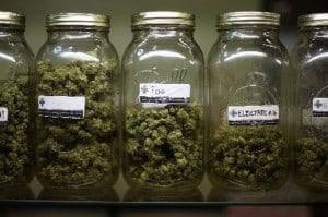 medical marijuana MPN