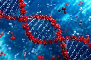 MPN gene