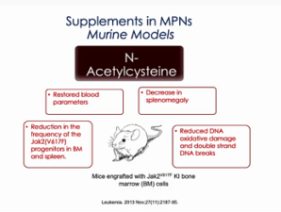 NAC supplement for MPN