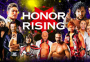 ROH 05/20/2017 TV Review