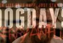 Dog Days 13: Caturday Vlog With Gary Jay