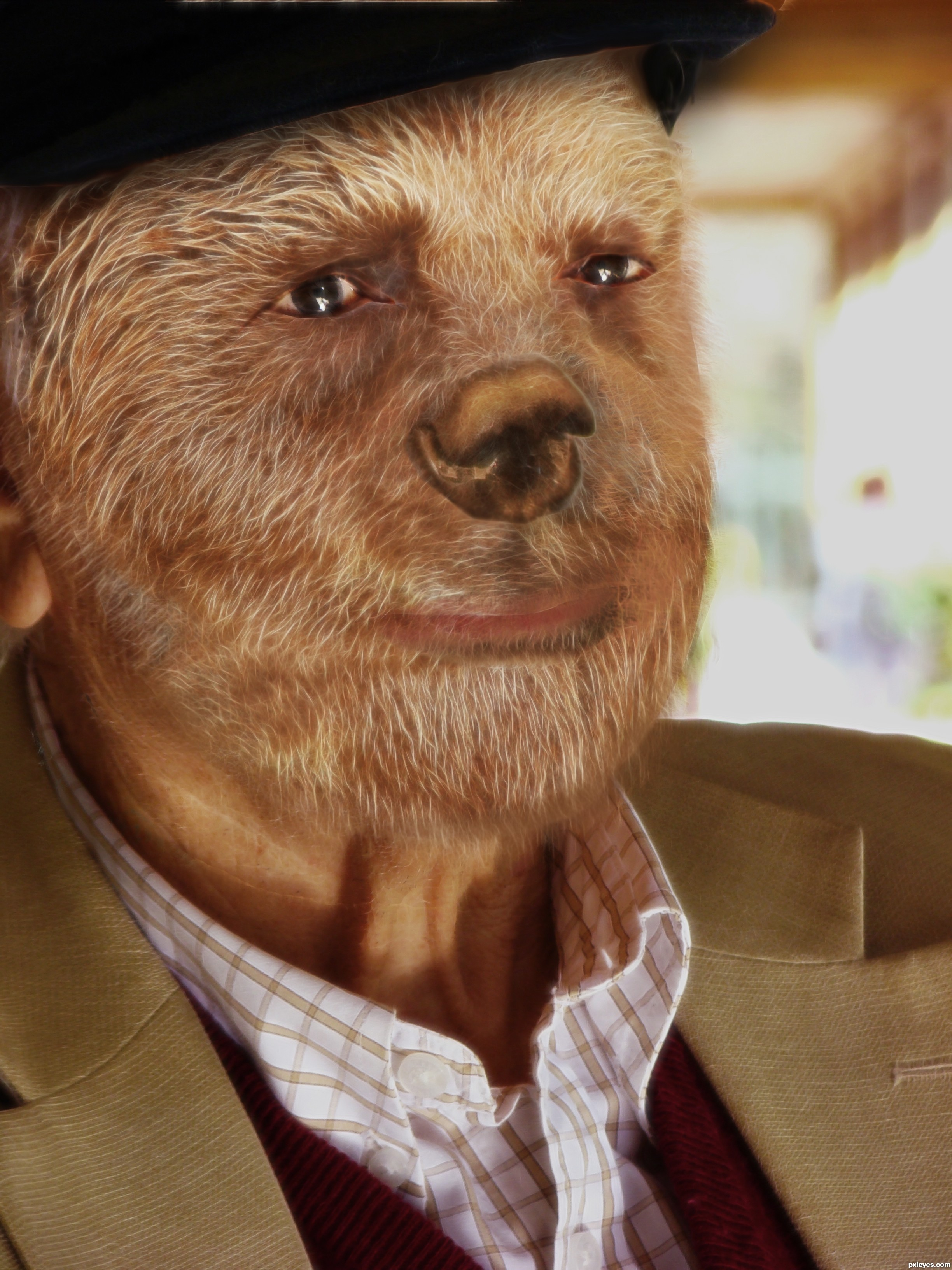 Old Bear Picture By Dynossaurus For Surreal Face Photoshop Contest