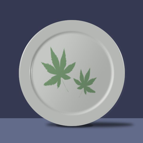 Create a Super Realistic Plate from Scratch Final Image