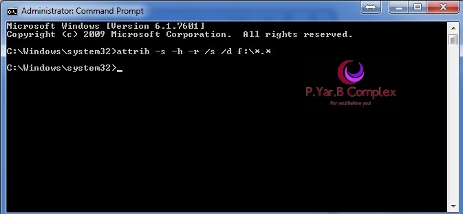 Removable Disk-CommandPrompt