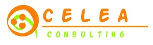 telecom consulting french company