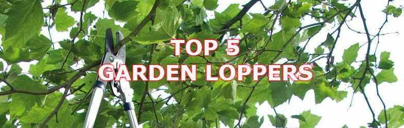 Best Garden Loppers – We review 5 of the best models