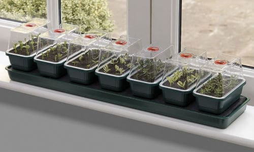 super7 self watering propagator is designed to fit onto the windowsill in your home. It features a self watering feature which keeps the soil moist for better germination.