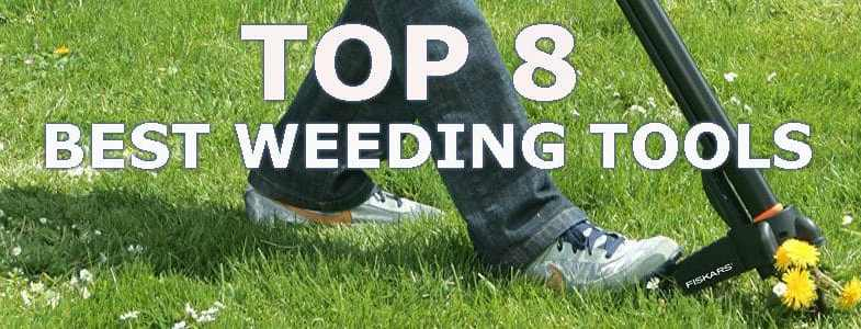 The Best Weeding Tools & 8 amazingly designed tools