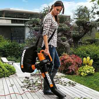 Worx leaf blower and vacuum. Practical gift idea.