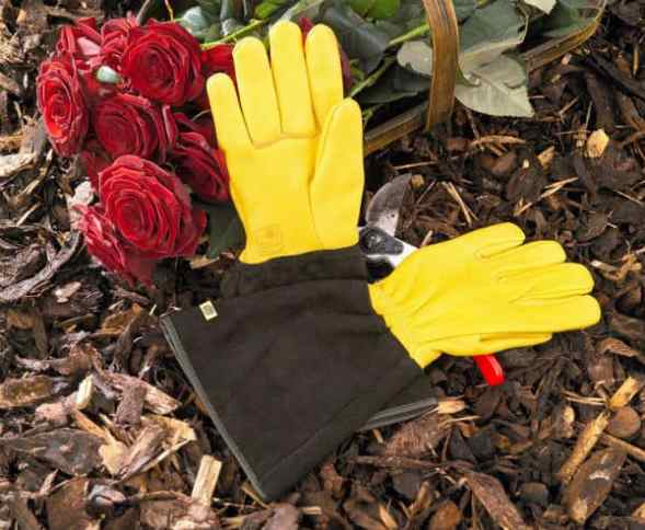 Gold Leaf Tough Touch Gloves Review
