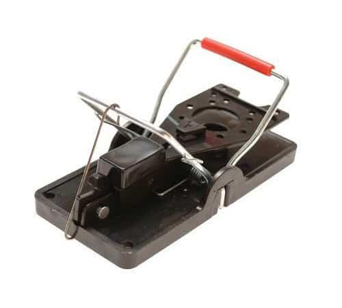 Rentokil Advanced Mouse Trap Review