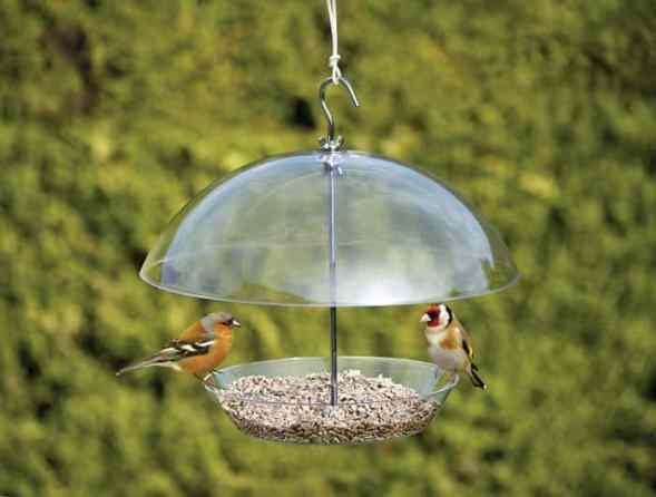 Squirrel Proof Hanging Dome Bird Feeder Review